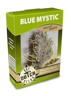 graine cannabis Blue Mystic
