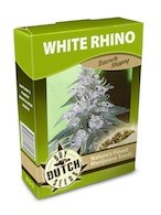 graine cannabis White Rhino
