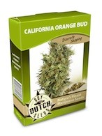 graine cannabis California Orange Bud