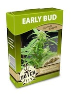 cannabis seeds Early Bud