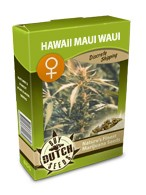 cannabis seeds Hawaii Maui Waui feminized