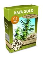 cannabis seeds Kaya Gold feminized