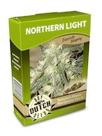 graine cannabis Northern Light