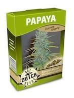 cannabis seeds Papaya