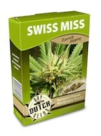 graine cannabis Swiss Miss