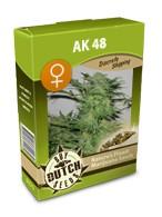 graine cannabis AK-48 féminisée