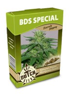 cannabis seeds BDS special